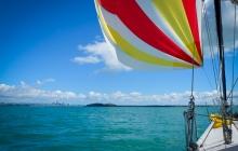 sailing into Auckland under spinnaker