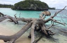 mushroom shaped island