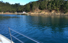 SOuth Bay Kawau Island