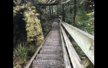 Just a few of the steps to Mt Hobson