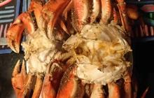 Delicious crab!