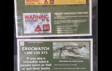 0800 CROC WATCH - So cool!