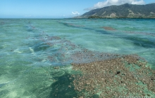 Streams of pumice floating by Kite Point at Nananu-I-Thake on Oct. 11th.