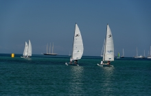 Ever popular, the hobie cat racing was a challenge in the super glassy conditions.